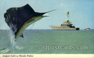 fis001318 - Florida USA Fishing Old Vintage Antique Postcard Post Card