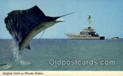 fis001326 - Florida USA Fishing Old Vintage Antique Postcard Post Card