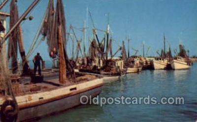 fis001328 - Shrimp Fleet, FL USA Fishing Old Vintage Antique Postcard Post Card