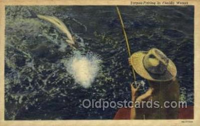 fis001332 - Florida, USA Fishing Old Vintage Antique Postcard Post Card