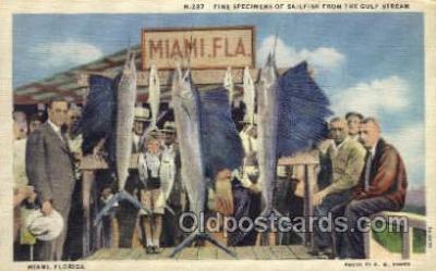 fis001336 - Miami, Florida, USA