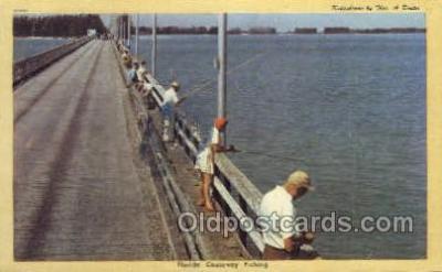fis001343 - Florida, USA Fishing Old Vintage Antique Postcard Post Card