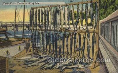fis001347 - Kingfish Fishing Old Vintage Antique Postcard Post Card