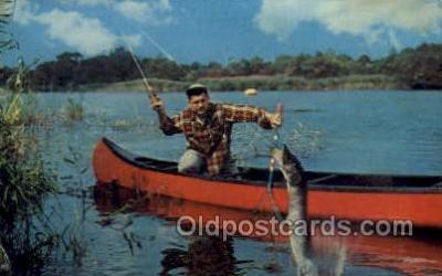 fis001361 - Fishing Old Vintage Antique Postcard Post Card