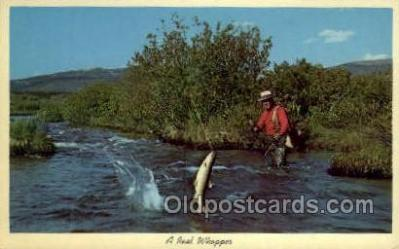 fis001377 - Fishing Old Vintage Antique Postcard Post Card