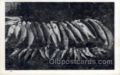 fis001389 - Fishing Old Vintage Antique Postcard Post Card