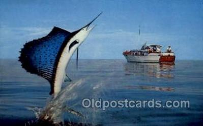 fis001400 - Jumping Marlin Fishing Old Vintage Antique Postcard Post Card