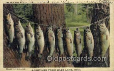 fis001407 - Cass Lake, Minn, USA Fishing Old Vintage Antique Postcard Post Card