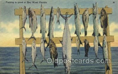 fis001438 - Key West, Florida, USA Fishing Old Vintage Antique Postcard Post Card