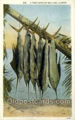 fis001445 - Florida, USA Fishing Old Vintage Antique Postcard Post Card