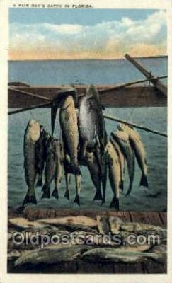 fis001447 - Florida, USA Fishing Old Vintage Antique Postcard Post Card