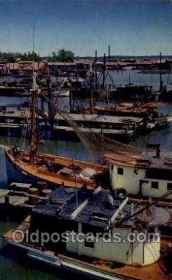 Shrimp Boats, Gulf Coast, FL, USA