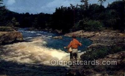 fis001479 - Fishing Old Vintage Antique Postcard Post Card