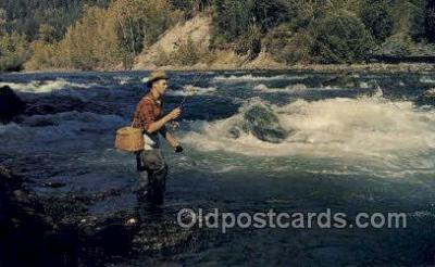 fis001485 - Greetings, Revelstoke, B.C. Fishing Old Vintage Antique Postcard Post Card
