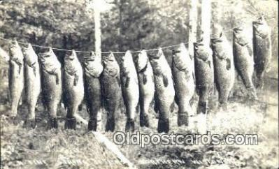 fis001518 - Northern Wisconsin, USA Fishing Postcard Real Photo Post Card Old Vintage Antique