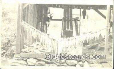 fis001519 - Fishing Postcard Real Photo Post Card Old Vintage Antique