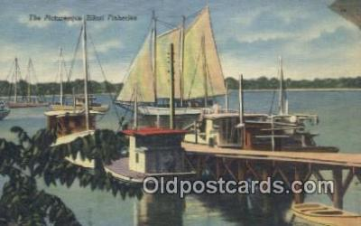 fis001545 - Biloxi Fisheries  Postcard Post Cards Old Vintage Antique