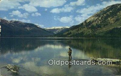 fis001557 - Alturas Lake, ID, USA Postcard Post Cards Old Vintage Antique