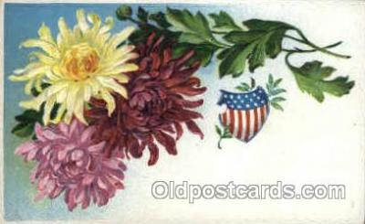 flr001065 - Flower Postcard Post Card