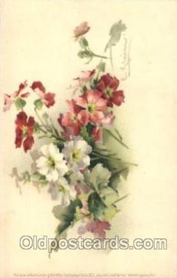 flr001072 - Flower, Flowers, Postcard Post Card