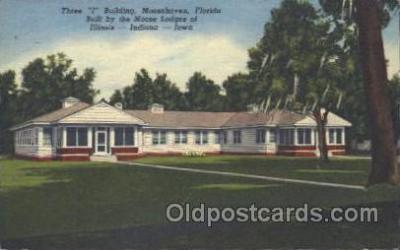 fra500015 - Moosehaven, Florida, USA Fraternal Moose Club, Postcard Post Card