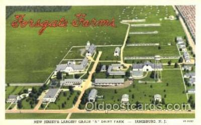 fty001004 - Dairy Farm, Jamesburg, NJ Factory Postcard Post Card