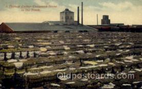 fac001106 - Typical Cotton Compress Scene  Postcard Post Cards Old Vintage Antique