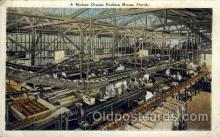 fac001117 - Modern Orange Packing House Florida, USA Postcard Post Cards Old Vintage Antique