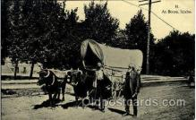 fam001003 - Boise, Idaho Ezra Meeker, Oregon Trail Traveler by Ox Cart Postcard Post Card