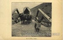 fam001008 - Burnt River, OR Ezra Meeker, Oregon Trail Traveler by Ox Cart Postcard Post Card