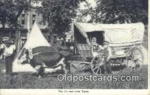 fam001022 - The Ox & Cow Team  Postcard Post Cards Old Vintage Antique