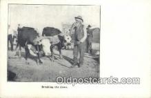 fam001023 - Breaking the Cows  Postcard Post Cards Old Vintage Antique