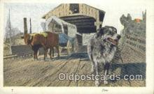 fam001042 - Jim, Oregon Trail  Postcard Post Cards Old Vintage Antique