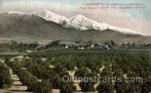 far001041 - Orange Groves, California Farming Postcard Post Card
