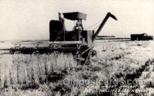 far001072 - Wheat Harvesting, Phillipsburg, KS Farming Postcard Post Card