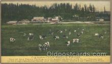 far001107 - Stock Farm Farming, Farm, Farmer, Postcard Postcards