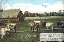far001108 - Cows Farming, Farm, Farmer, Postcard Postcards