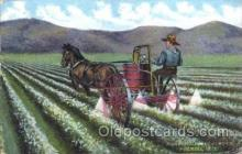far001164 - Farming, Farm, Farmer, Postcard Postcards