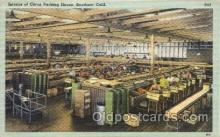 far001167 - Packing Farming, Farm, Farmer, Postcard Postcards