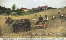 far001182 - Finland Farming, Farm, Farmer, Postcard Postcards