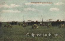 far001218 - Harvesting in South Dakota Farming, Farm, Farmer, Postcard Postcards