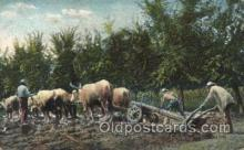 far001222 - Farming, Farm, Farmer, Postcard Postcards