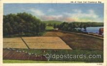 far001243 - Cranberries Farm Farming, Farm, Farmer, Postcard Postcards