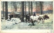 far001260 - Maple Sugar, Vermont Farming, Farm, Farmer, Postcard Postcards