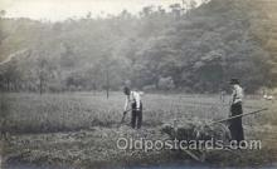 far001270 - Farming, Farm, Farmer, Postcard Postcards