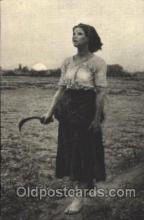 far001272 - Farming, Farm, Farmer, Postcard Postcards