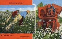far001285 - Gathering Cotton Farming Old Vintage Antique Postcard Post Card