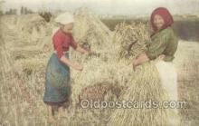 far001306 - Farming Old Vintage Antique Postcard Post Card