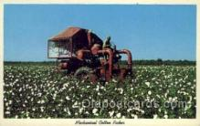 far001313 - Cotton Picker Farming Old Vintage Antique Postcard Post Card