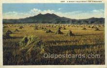 far001319 - Wheat Field Farming Old Vintage Antique Postcard Post Card